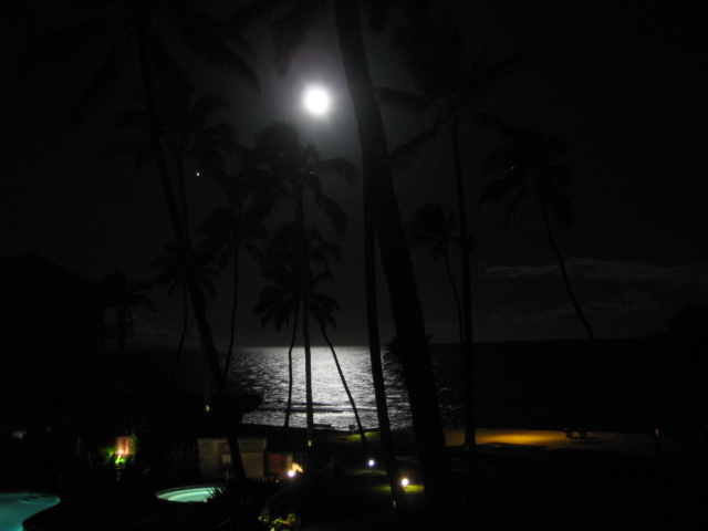 Papakea Resort Moonset Maui Condo Rental